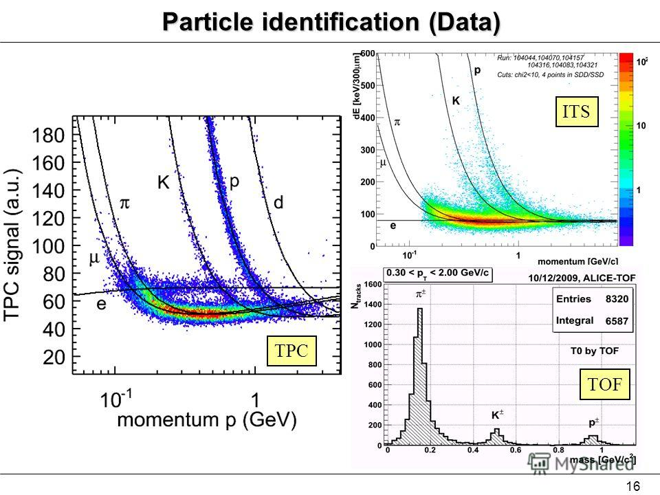 16 TPC ITS TOF Particle identification (Data)