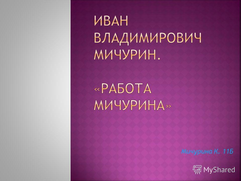 Мичурина К. 11Б