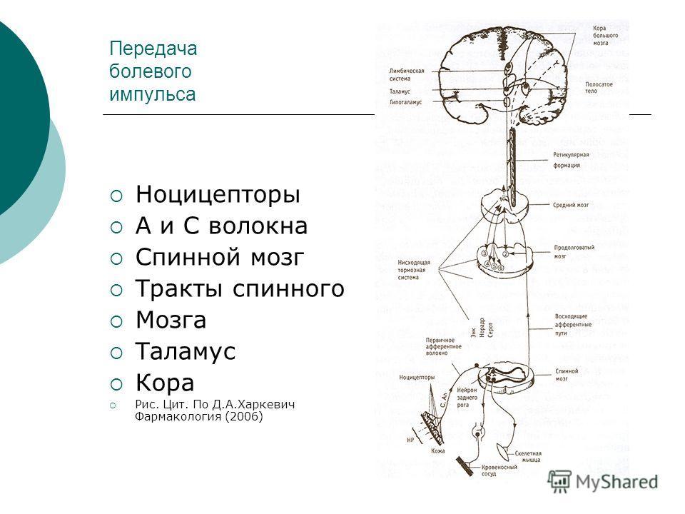 Передача болевого импульса Ноцицепторы А и С волокна Спинной мозг Тракты спинного Мозга Таламус Кора Рис. Цит. По Д.А.Харкевич Фармакология (2006)