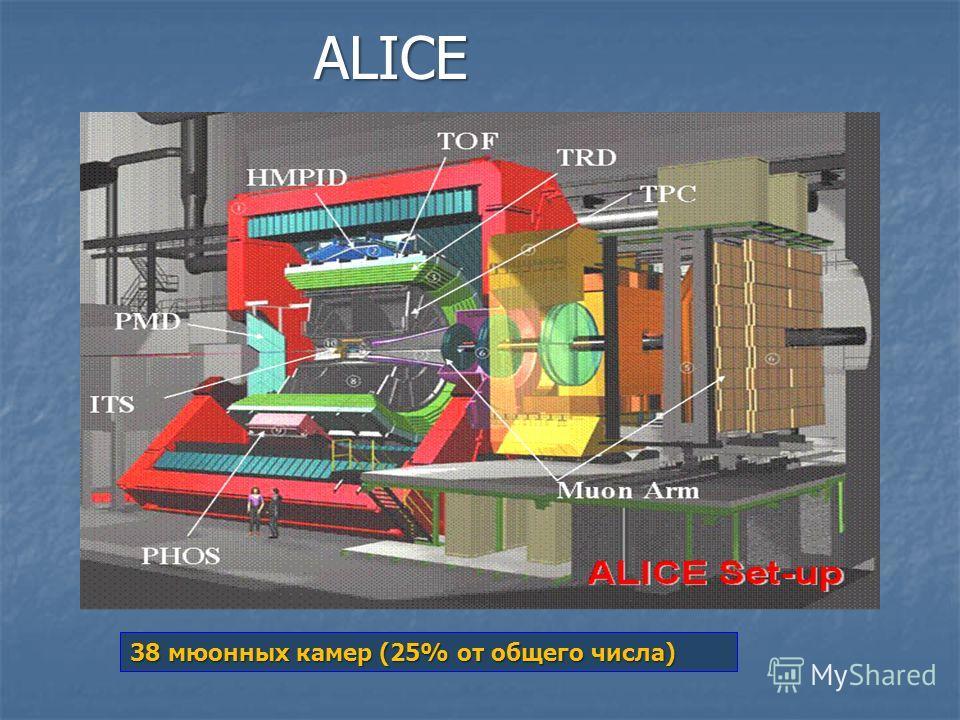 ALICE 38 мюонных камер (25% от общего числа)
