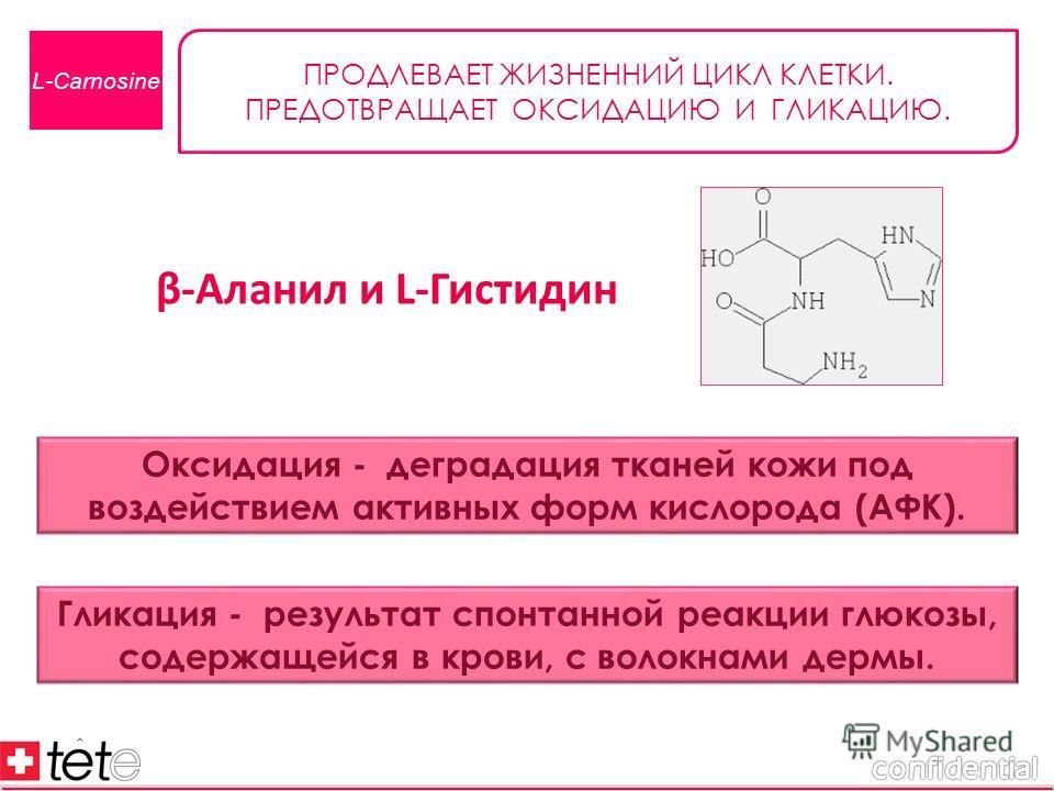 β-Аланил и L-Гистидин L-Carnosine ПРОДЛЕВАЕТ ЖИЗНЕННИЙ ЦИКЛ КЛЕТКИ. ПРЕДОТВРАЩАЕТ ОКСИДАЦИЮ И ГЛИКАЦИЮ. Оксидация - деградация тканей кожи под воздействием активных форм кислорода (АФК). Гликация - результат спонтанной реакции глюкозы, содержащейся в