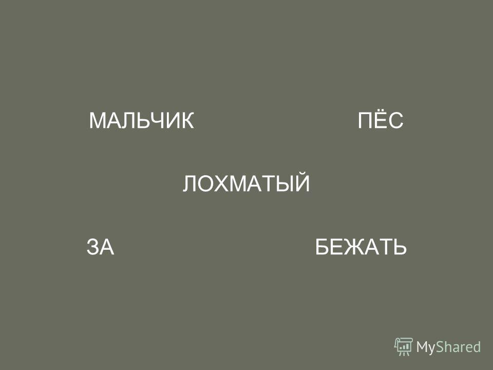 МАЛЬЧИК ПЁС ЛОХМАТЫЙ ЗА БЕЖАТЬ