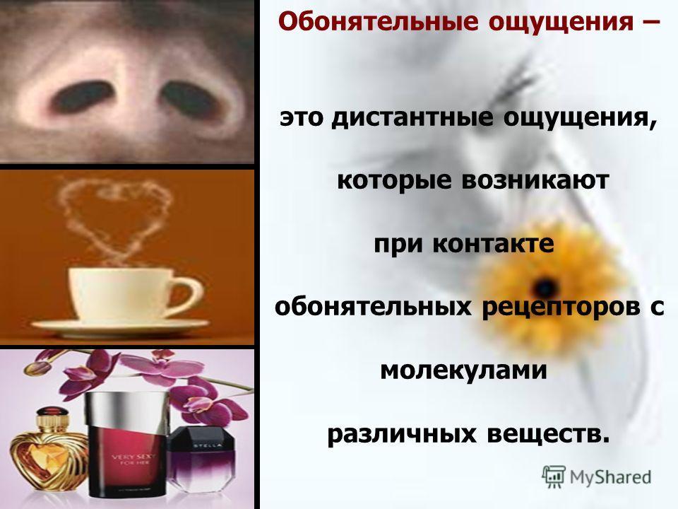Обонятельные ощущения – это дистантные ощущения, которые возникают при контакте обонятельных рецепторов с молекулами различных веществ.