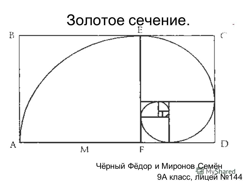 Золотое сечение. Чёрный Фёдор и Миронов Семён 9А класс, лицей 144