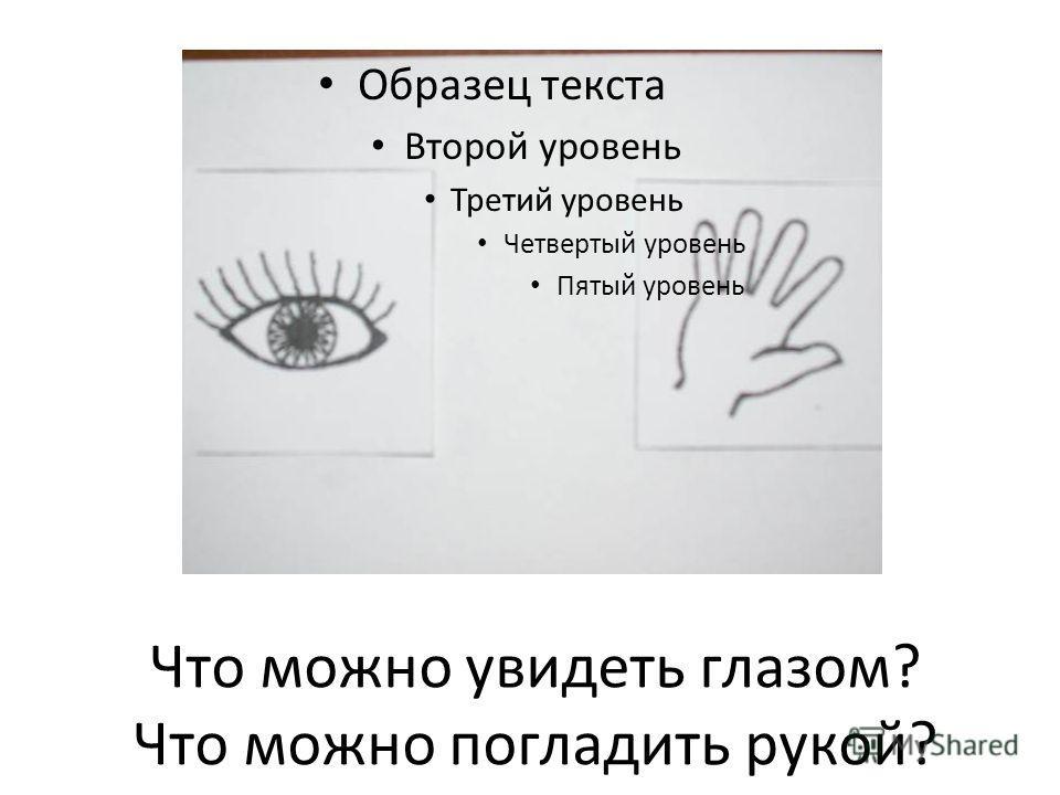 Что можно увидеть глазом? Что можно погладить рукой? Образец текста Второй уровень Третий уровень Четвертый уровень Пятый уровень