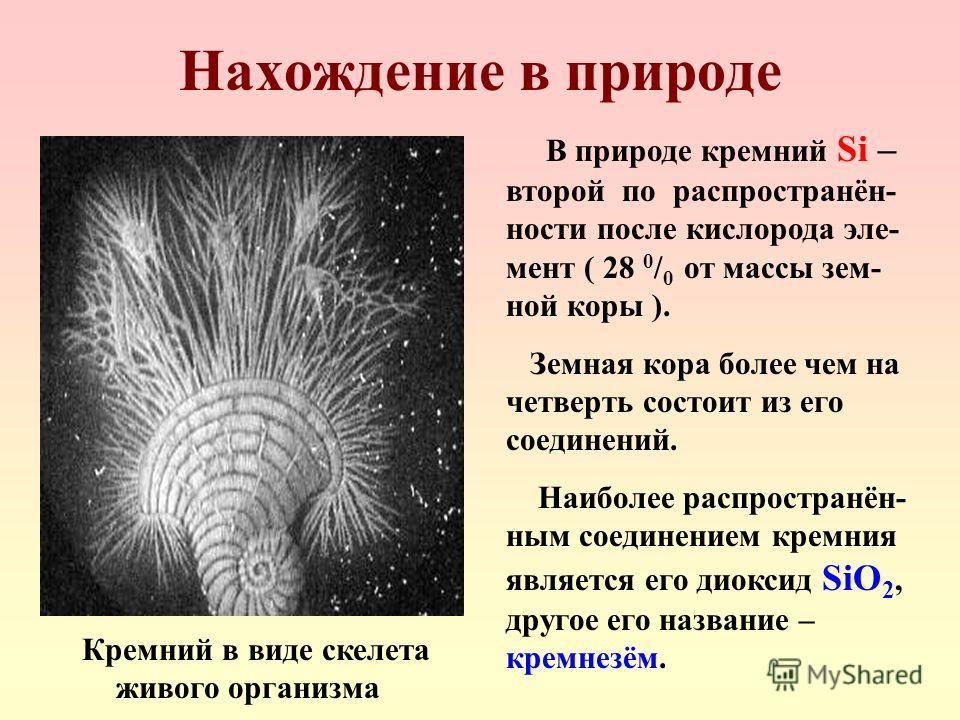 Нахождение в природе В природе кремний Si – второй по распространён- ности после кислорода эле- мент ( 28 0 / 0 от массы зем- ной коры ). Земная кора более чем на четверть состоит из его соединений. Наиболее распространён- ным соединением кремния явл