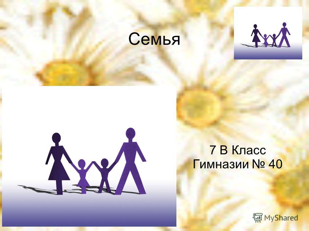 Семья 7 В Класс Гимназии 40