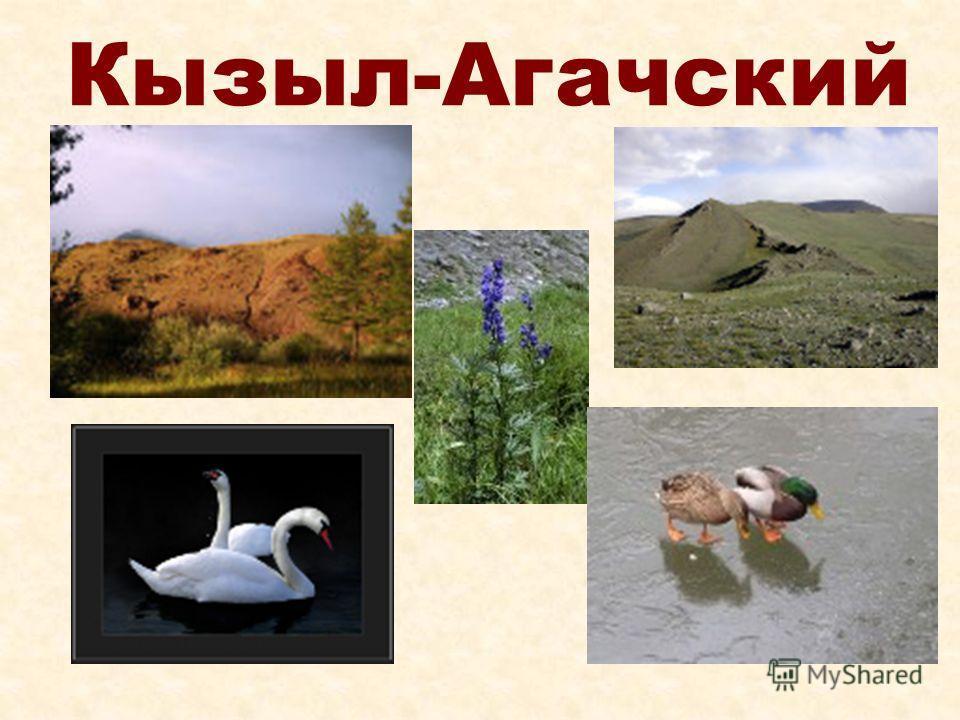 Кызыл-Агачский