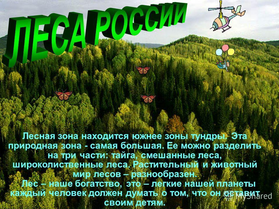 Лесная зона находится южнее зоны тундры. Эта природная зона - самая большая. Ее можно разделить на три части: тайга, смешанные леса, широколиственные леса. Растительный и животный мир лесов – разнообразен. Лес – наше богатство, это – легкие нашей пла