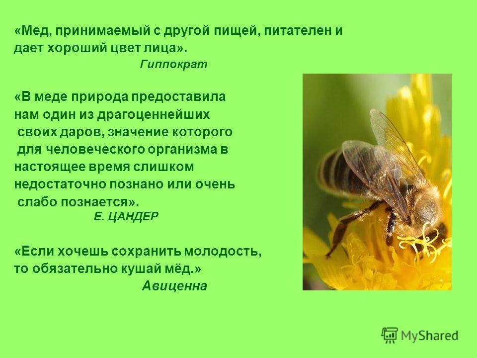 1 кг мёда – это 10 млн. медоносных цветов.