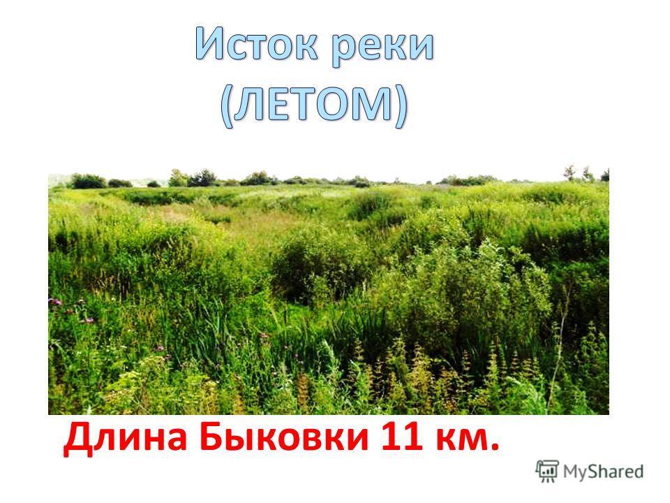 Длина Быковки 11 км.