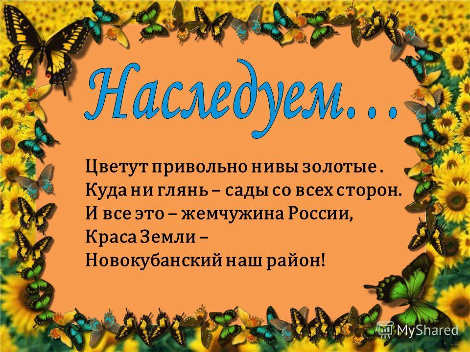 Цветут привольно нивы золотые. Куда ни глянь – сады со всех сторон. И все это – жемчужина России, Краса Земли – Новокубанский наш район!