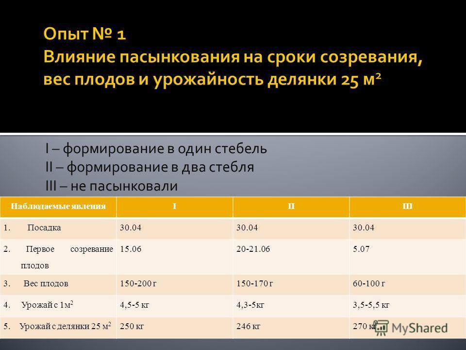 I – формирование в один стебель II – формирование в два стебля III – не пасынковали Наблюдаемые явленияIIIIII 1. Посадка30.04 2. Первое созревание плодов 15.0620-21.065.07 3. Вес плодов150-200 г150-170 г60-100 г 4. Урожай с 1м 2 4,5-5 кг4,3-5кг3,5-5,