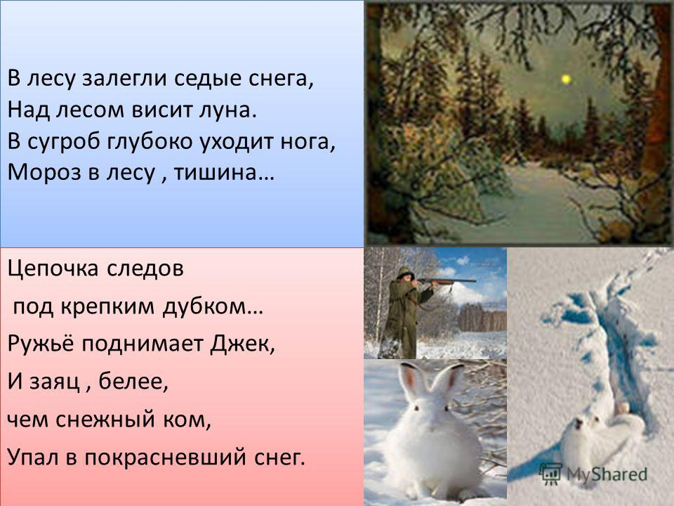 В лесу залегли седые снега, Над лесом висит луна. В сугроб глубоко уходит нога, Мороз в лесу, тишина… Цепочка следов под крепким дубком… Ружьё поднимает Джек, И заяц, белее, чем снежный ком, Упал в покрасневший снег. Цепочка следов под крепким дубком