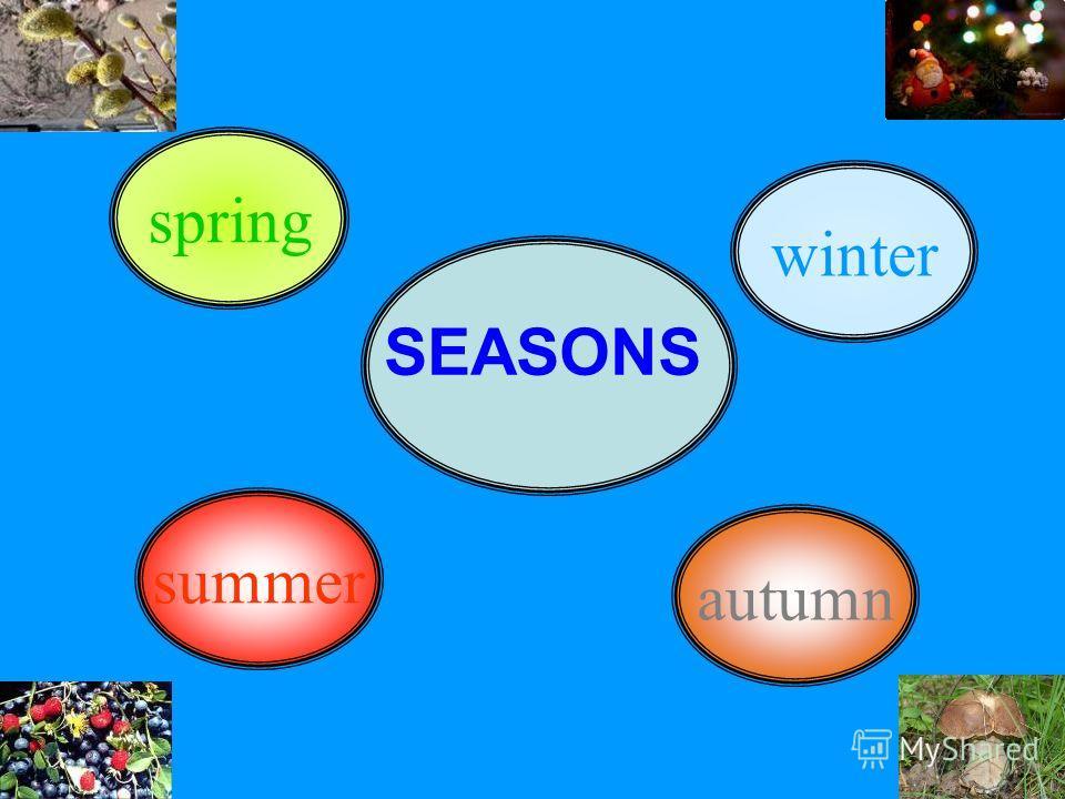 summer spring winter autumn SEASONS