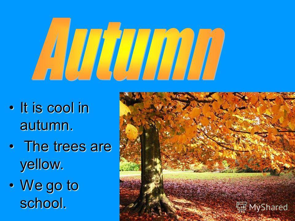 It is cool in autumn.It is cool in autumn. The trees are yellow. The trees are yellow. We go to school.We go to school.