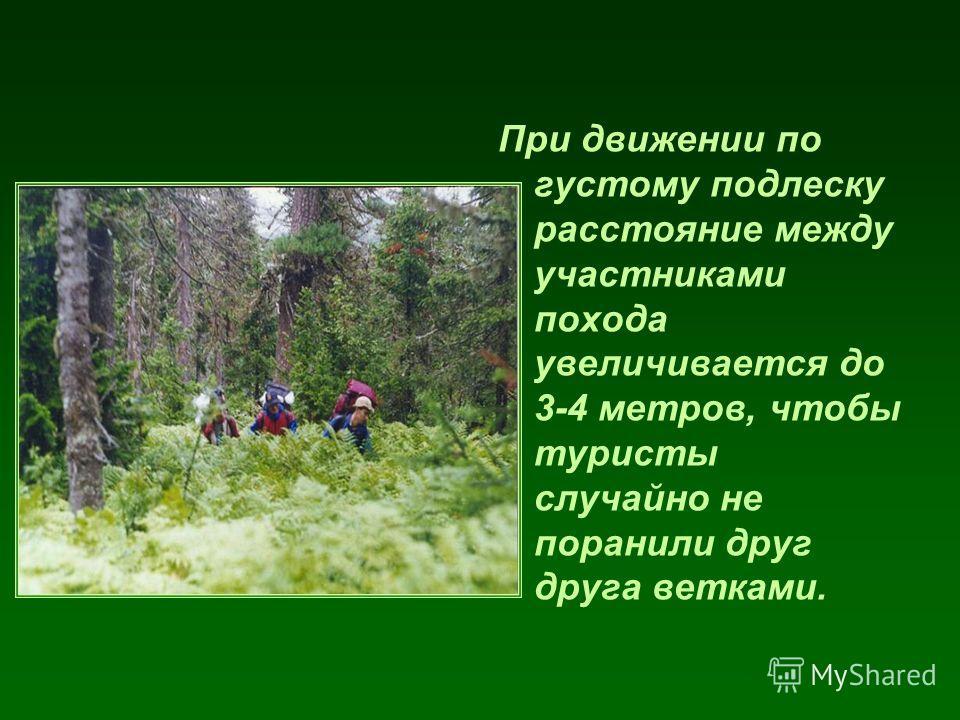 При движении по густому подлеску расстояние между участниками похода увеличивается до 3-4 метров, чтобы туристы случайно не поранили друг друга ветками.