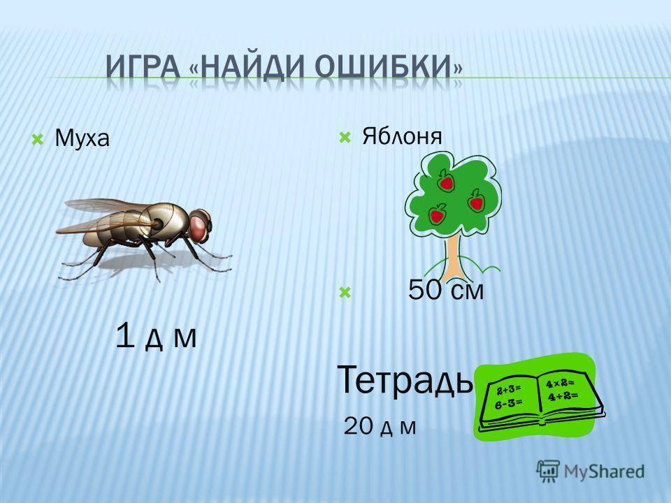 Яблоня 50 см Тетрадь 20 д м Муха 1 д м