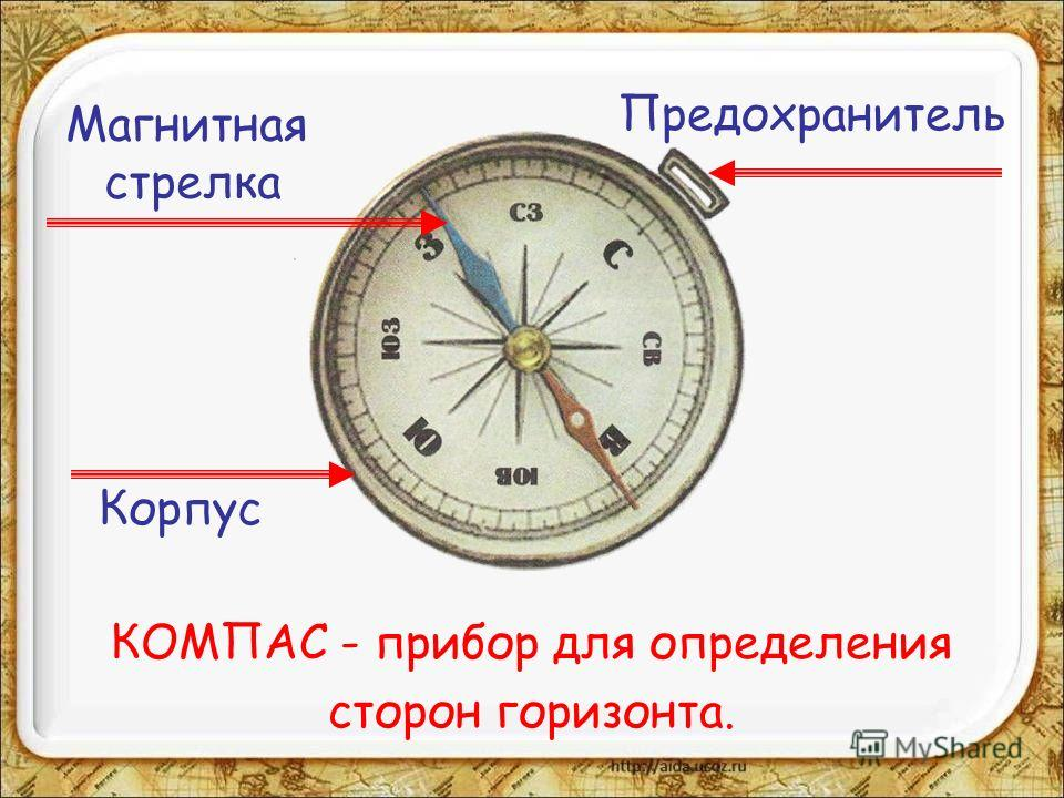 КОМПАС - прибор для определения сторон горизонта. Корпус Магнитная стрелка Предохранитель