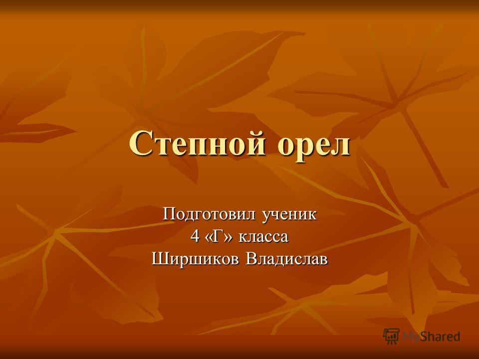 Степной орел Подготовил ученик 4 «Г» класса Ширшиков Владислав