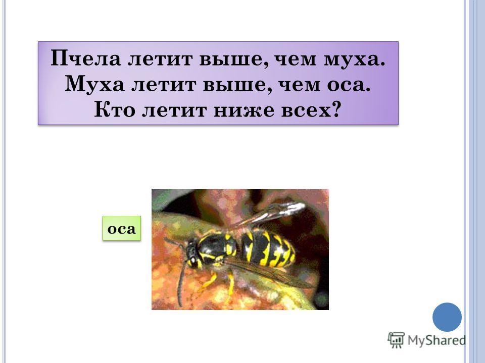 Р ЕШЕНИЕ ЛОГИЧЕСКИХ ЗАДАЧ