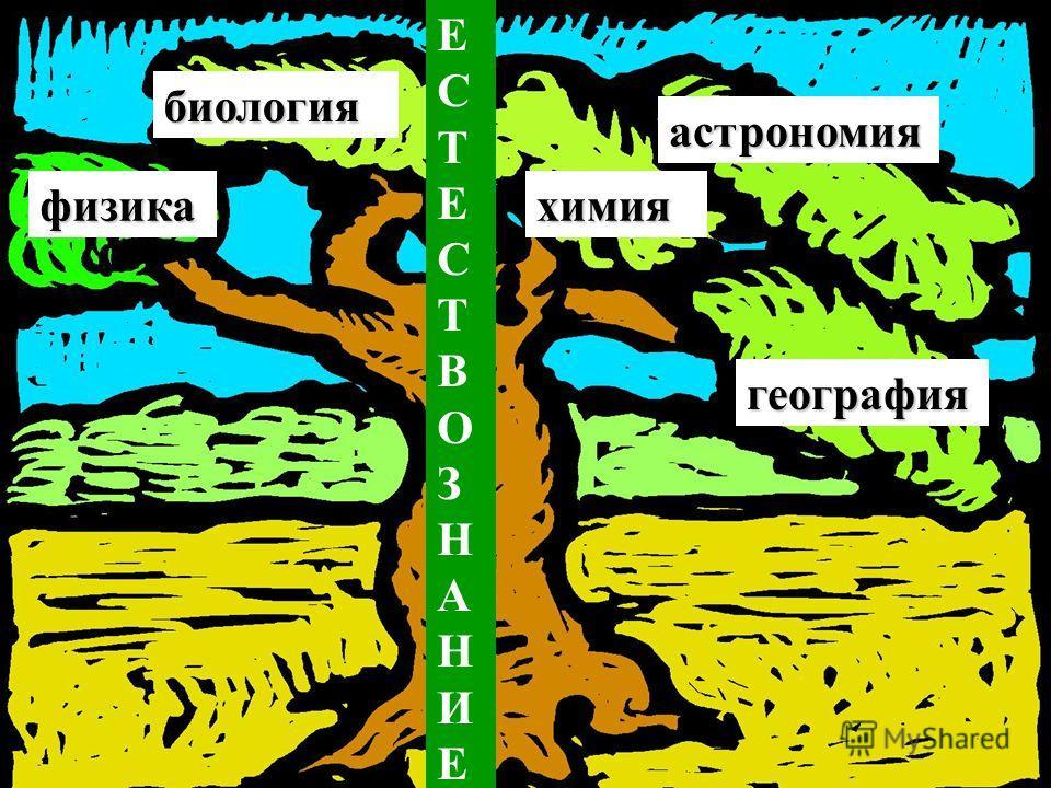 ЕСТЕСТВОЗНАНИЕЕСТЕСТВОЗНАНИЕфизикахимия биология астрономия география