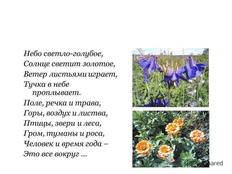 Небо светло-голубое, Солнце светит золотое, Ветер листьями играет, Тучка в небе проплывает. Поле, речка и трава, Горы, воздух и листва, Птицы, звери и леса, Гром, туманы и роса, Человек и время года – Это все вокруг …