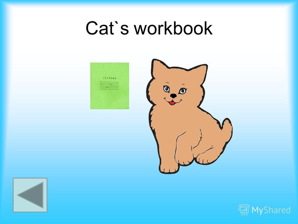 Cat`s workbook