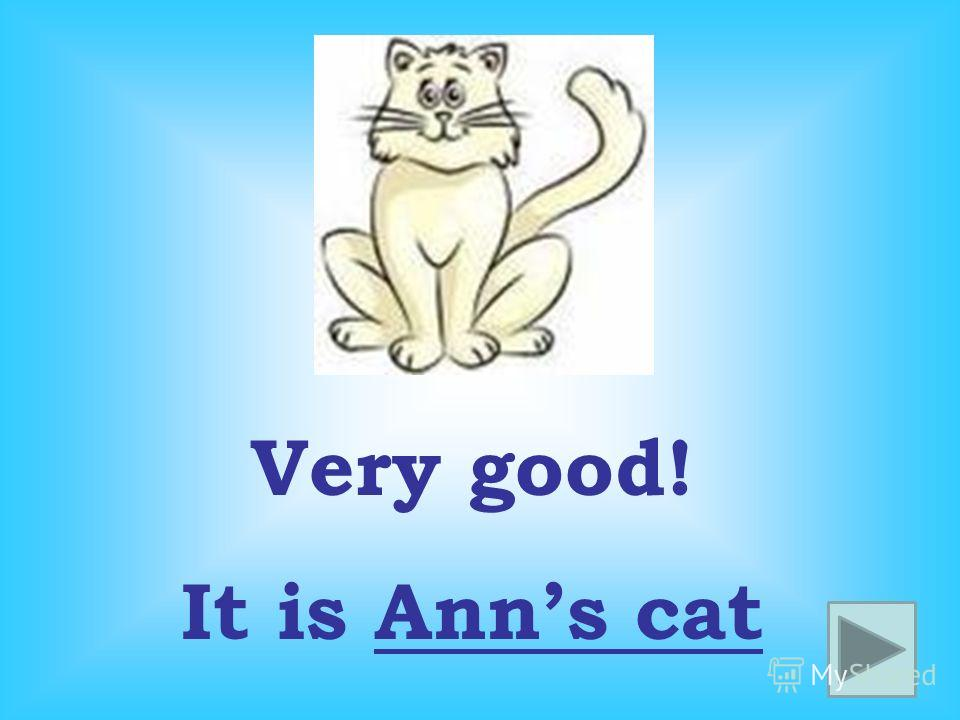Very good! It is Anns cat