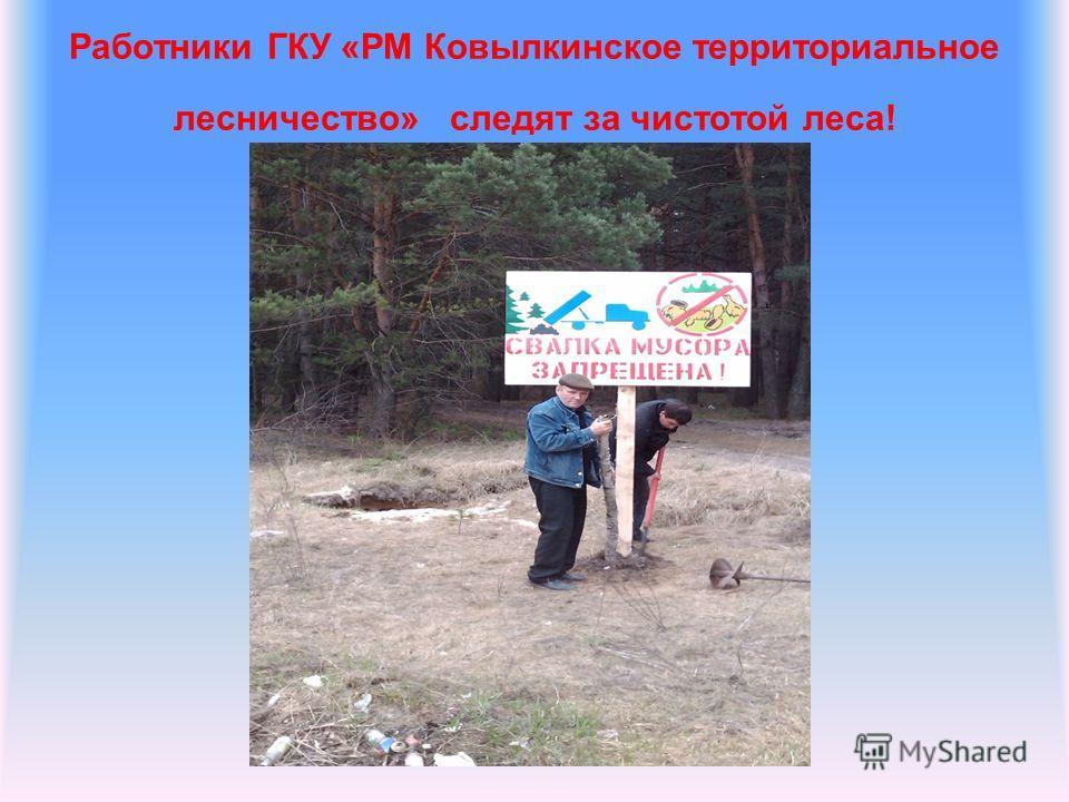 Работники ГКУ «РМ Ковылкинское территориальное лесничество» следят за чистотой леса!