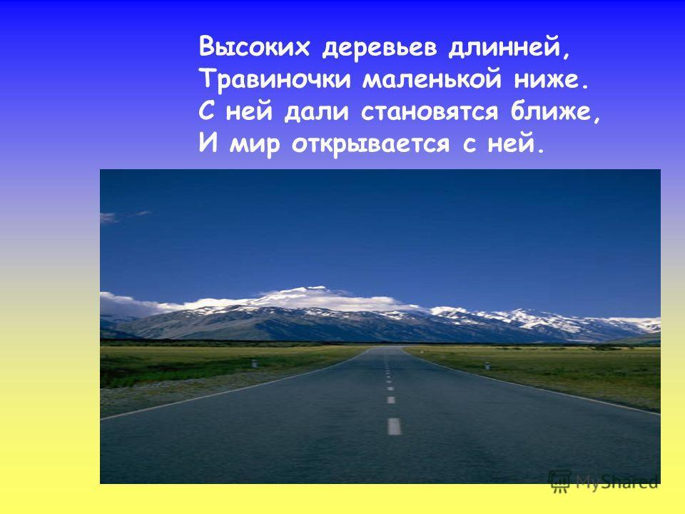 Сам не едет, не идёт, Не поддержишь – упадёт, А педали пустишь в ход – Он помчит тебя вперёд.