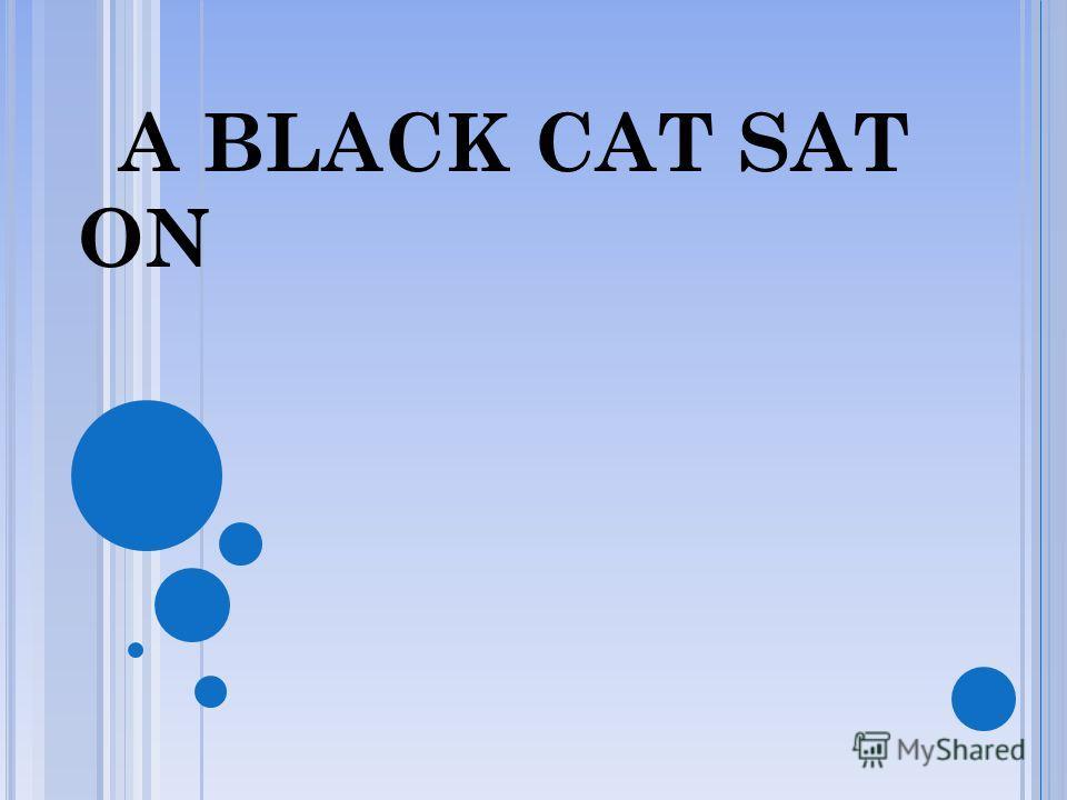 A BLACK CAT SAT