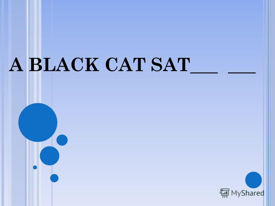 A BLACK CAT SAT ON _____