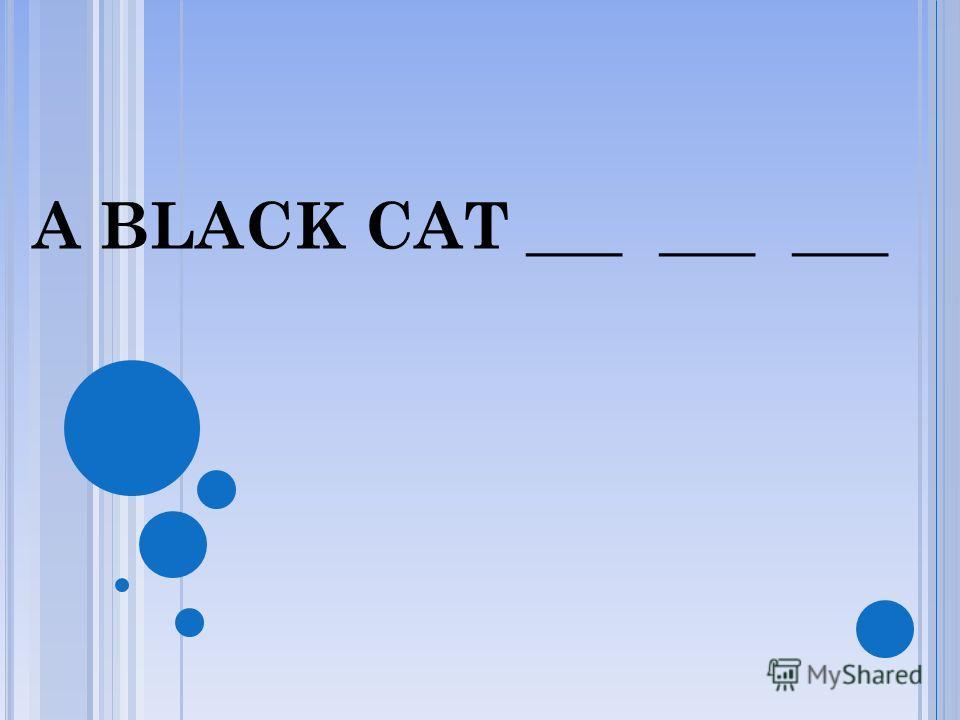 A BLACK CAT SAT___ ___