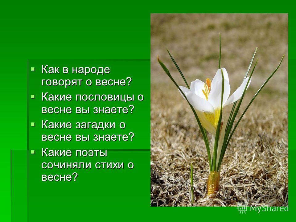 Картинки для доу про весну и пословицы