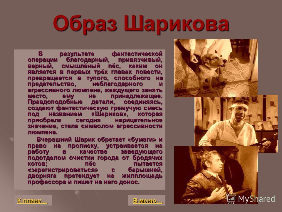 Образ Шарикова В результате фантастической операции благодарный, привязчивый, верный, смышлёный пёс, каким он является в первых трёх главах повести, превращается в тупого, способного на предательство, неблагодарного и агрессивного люмпена, жаждущего