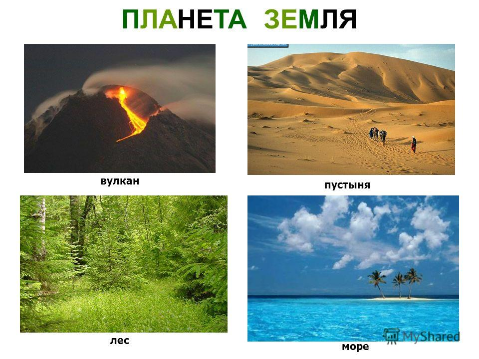ПЛАНЕТА ЗЕМЛЯ вулкан пустыня лес море