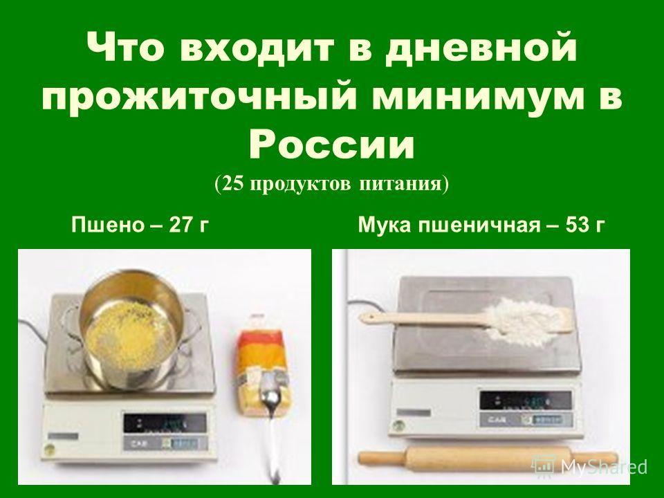 Что входит в дневной прожиточный минимум в России (25 продуктов питания) Пшено – 27 гМука пшеничная – 53 г