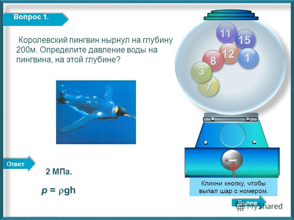 Ответ 11 12 15 8 7 3 Далее http://edu-teacherzv.ucoz.ru Кликни кнопку, чтобы выпал шар с номером. 1 Вопрос 1. Королевский пингвин нырнул на глубину 200м. Определите давление воды на пингвина, на этой глубине? 2 МПа. р = gh