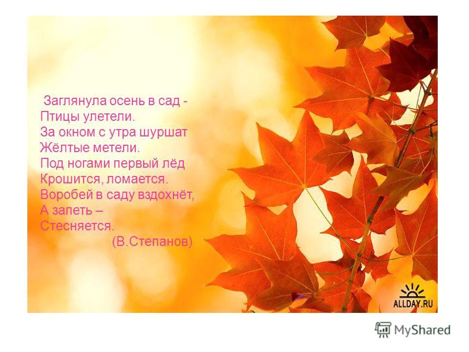 Заглянула осень в сад - Птицы улетели. За окном с утра шуршат Жёлтые метели. Под ногами первый лёд Крошится, ломается. Воробей в саду вздохнёт, А запеть – Стесняется. (В.Степанов)