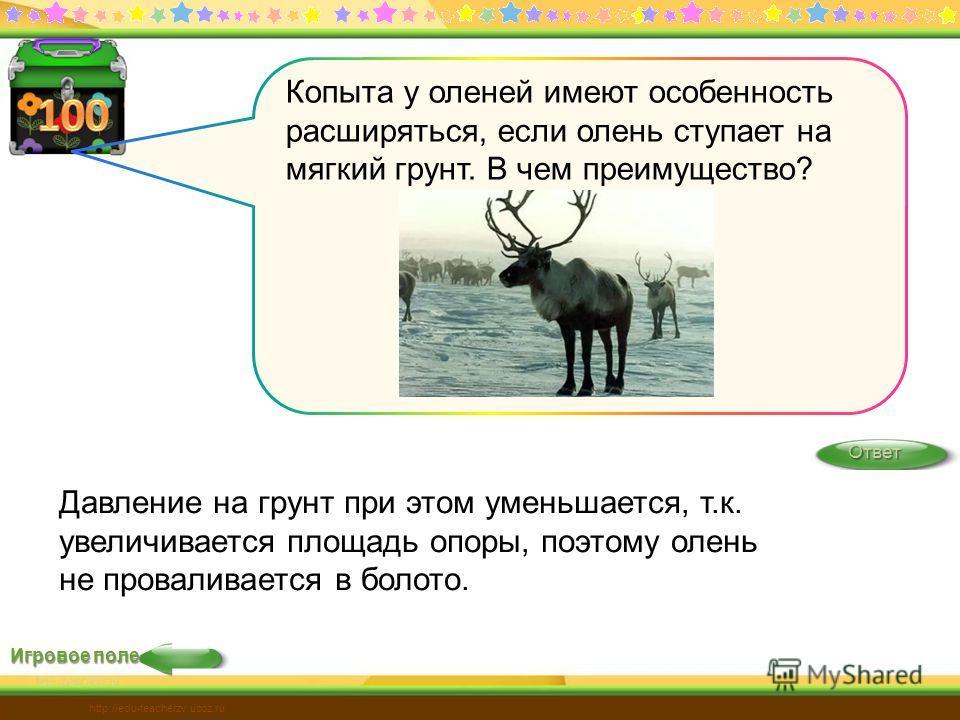 Игровое поле Ответ http://edu-teacherzv.ucoz.ru Давление на грунт при этом уменьшается, т.к. увеличивается площадь опоры, поэтому олень не проваливается в болото. Копыта у оленей имеют особенность расширяться, если олень ступает на мягкий грунт. В че