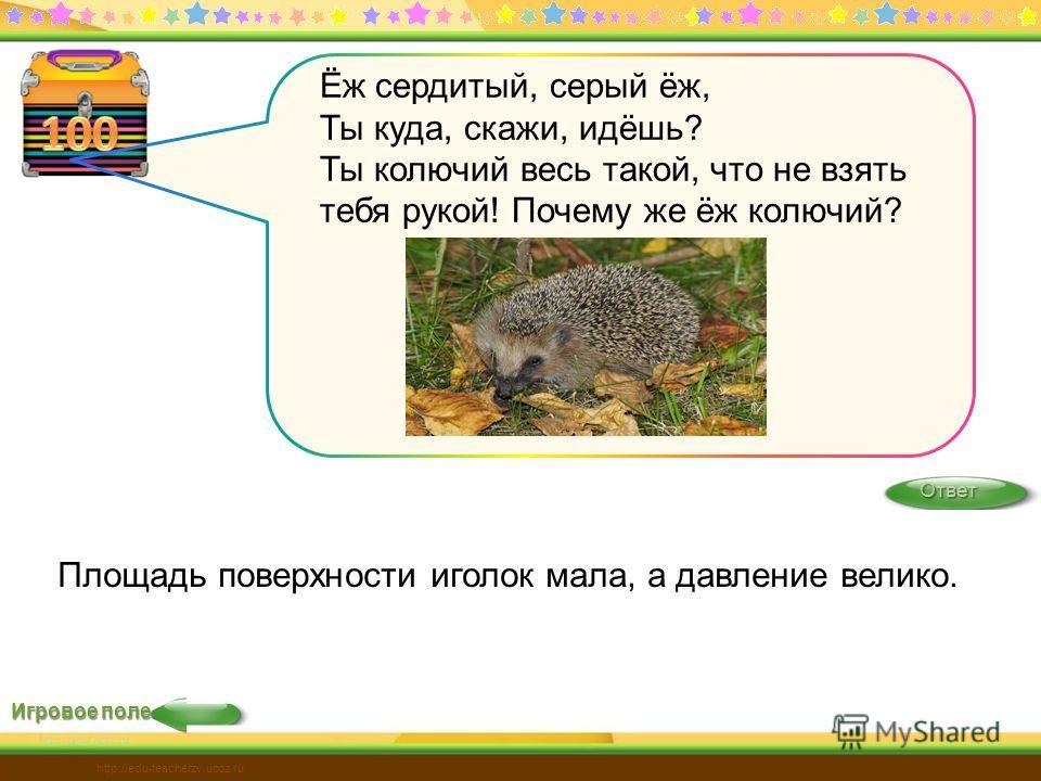Игровое поле Ответ http://edu-teacherzv.ucoz.ru Ёж сердитый, серый ёж, Ты куда, скажи, идёшь? Ты колючий весь такой, что не взять тебя рукой! Почему же ёж колючий? Площадь поверхности иголок мала, а давление велико.
