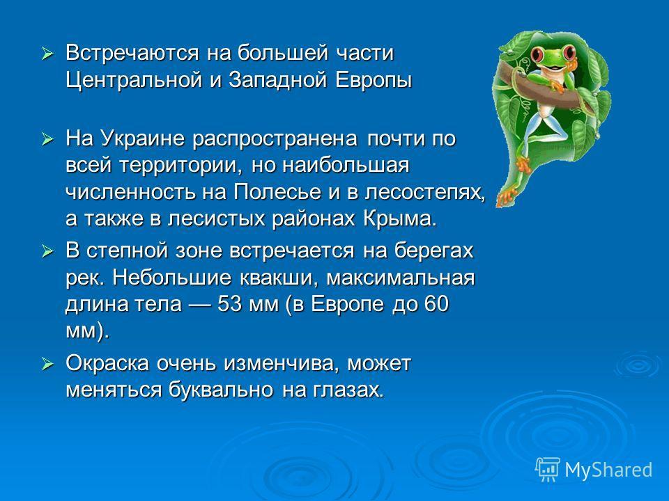 Встречаются на большей части Центральной и Западной Европы Встречаются на большей части Центральной и Западной Европы На Украине распространена почти по всей территории, но наибольшая численность на Полесье и в лесостепях, а также в лесистых районах