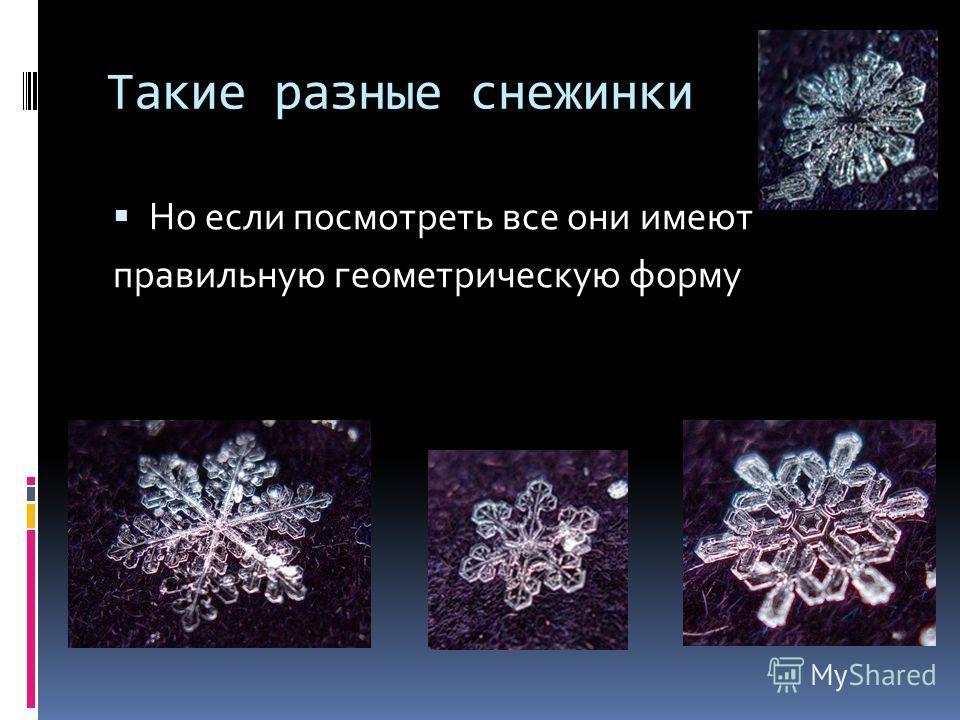 Такие разные снежинки Но если посмотреть все они имеют правильную геометрическую форму