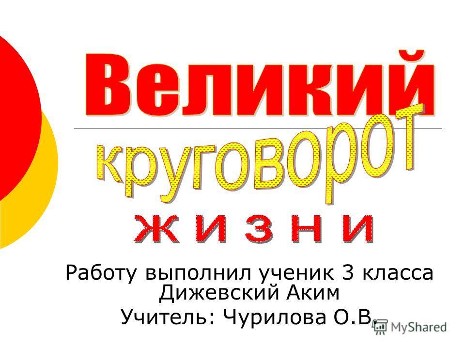 Работу выполнил ученик 3 класса Дижевский Аким Учитель: Чурилова О.В.