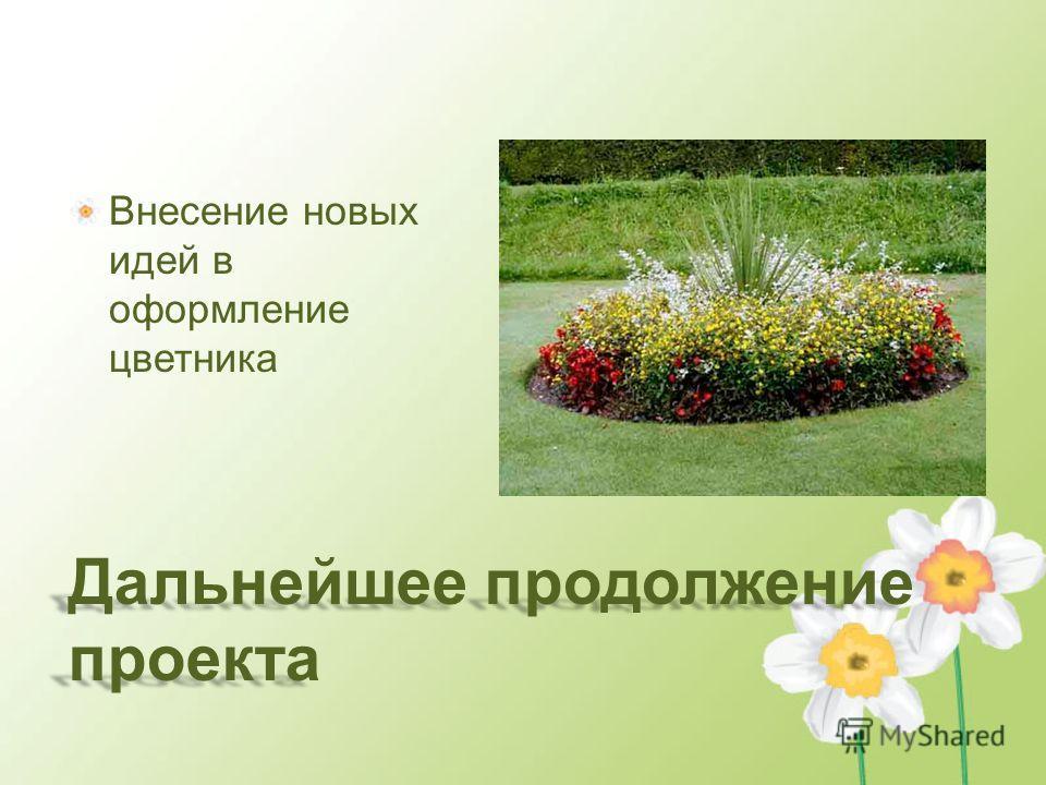 Дальнейшее продолжение проекта Внесение новых идей в оформление цветника