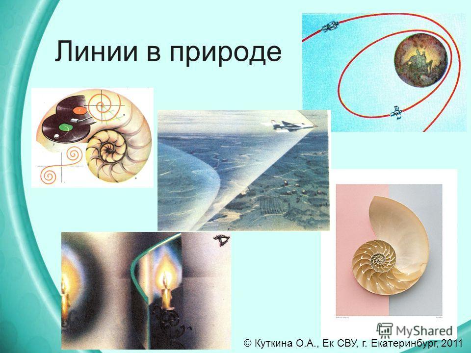 Линии в природе © Куткина О.А., Ек СВУ, г. Екатеринбург, 2011