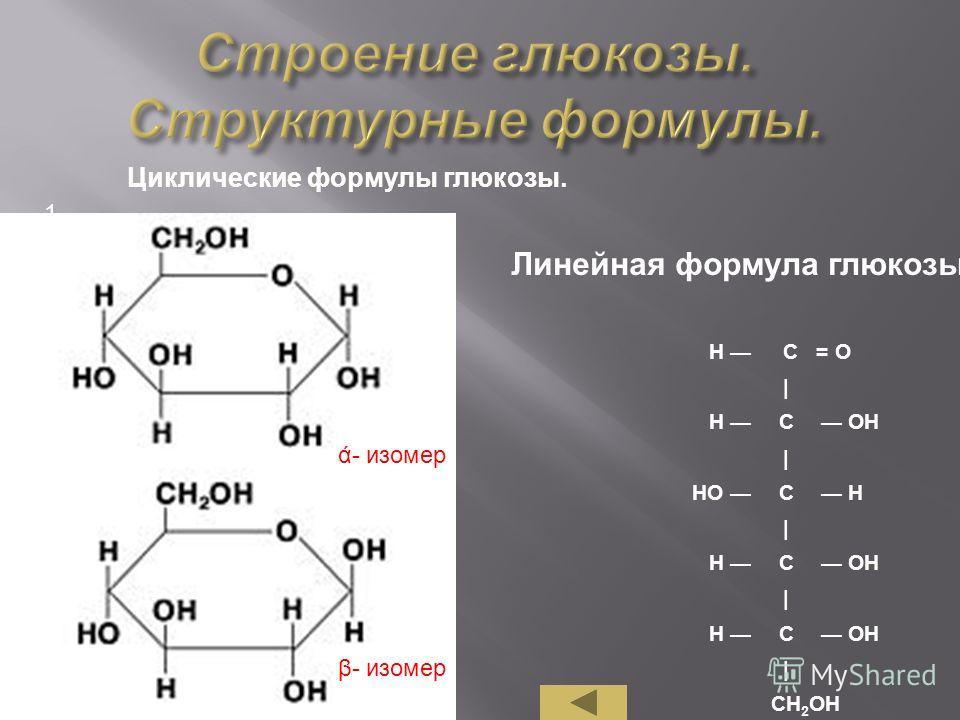 1. 2. Н С = О | Н С ОН | НО С Н | Н С ОН | Н С | СН 2 ОН Линейная формула глюкозы. Циклические формулы глюкозы. ά- изомер β- изомер