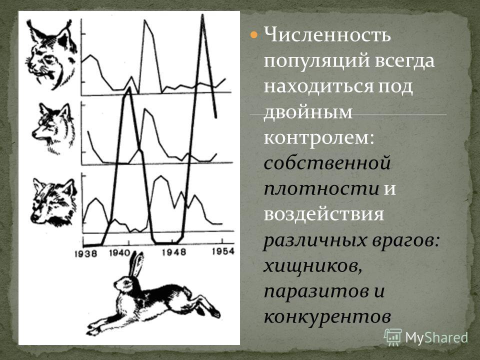 Численность популяций всегда находиться под двойным контролем: собственной плотности и воздействия различных врагов: хищников, паразитов и конкурентов