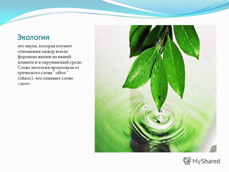 Экология это наука, которая изучает отношения между всеми формами жизни на нашей планете и в окружающей среде. Слово экология произошла от греческого слова  oikos  (ойкос), что означает слово «дом».